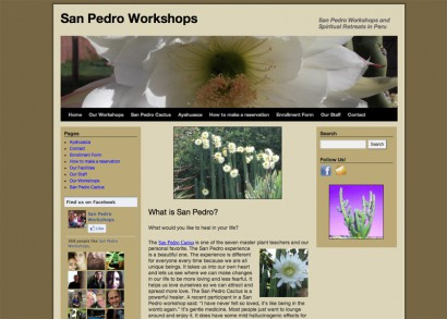 San Pedro Workshops